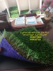شركة غراس لاند ( ملاعب عشب صناعي )  العشب الصناعي أو النجيلة الصناعية